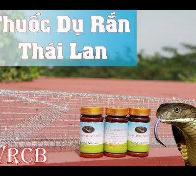 Thuốc dụ rắn Thái Lan