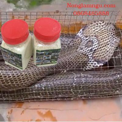 Thuốc dụ rắn Trung Quốc